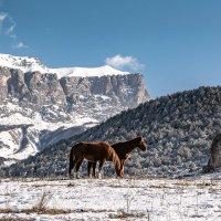 Северная Осетия :: ALAN DJIGSTAR