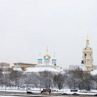 Новоспасский  монастырь  зимой :: Наталья Чернушкина