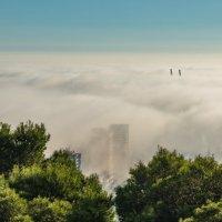 Город скрылся в тумане :: Владимир Брагилевский