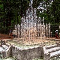 В летнем саду! :: Натали Пам