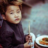 Viet Nam :: Lora Marenkova