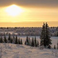 Солнечная люстра :: Олег Кулябин