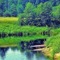 Там,где живёт лето... :: Sergey Gordoff