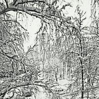 Зима :: Nikolay Monahov