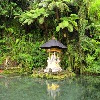В одном из храмов на Бали :: Юрий Белоусов
