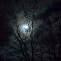 Луна, как бледное пятно  Сквозь тучи мрачные желтела :: Анастасия Быкова