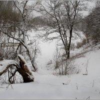 Зимний день на Лучесе. :: Роланд Дубровский