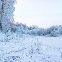 Белый январь :: Игорь Чичиль