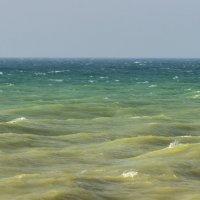 Над волнами :: Игорь Кузьмин