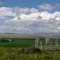 Просторы Хакасии :: Roman Freewind
