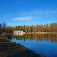 По весеннему тёплый январский день...... :: Galina Dzubina