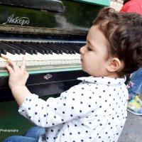 Будущая пианистка :: Oksana 777