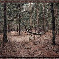 В лесу.  Фантазия :: Марк Э