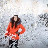 Зимняя фотосессия :: Евгений Третьяков