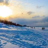 зимний день :: Елена Кордумова