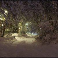 Мой двор после снегопада :: Михаил Онипенко
