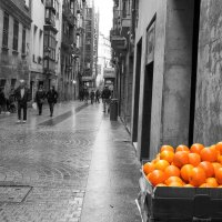 Апельсины. :: Александр Гурьянов