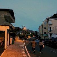 Вечерняя прогулка :: Alexander Andronik