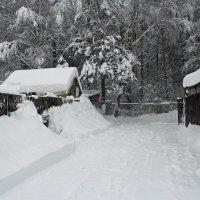 Вчерашний снегопад :: Лара (АГАТА)