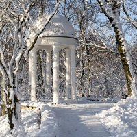 В зимнем парке :: Виктор Позняков