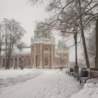 Снежное Царицыно :: Марина Назарова