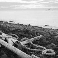 Море :: Елена Васильева