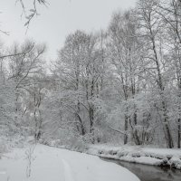 Снежный мир :: Alena Karpova