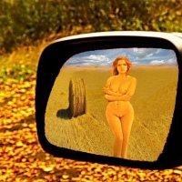 Времена года(Осень) :: irina Schwarzer