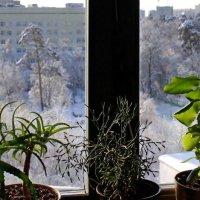 Сказка за окном :: ВАЛЕРИЙ
