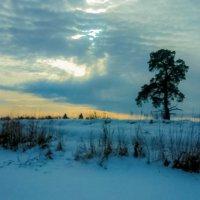 Солнце в облоках :: Георгий Морозов