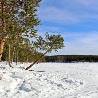 Весна заполярного озера :: Ольга