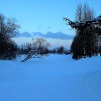 На зимнем пруду... :: Sergey Gordoff