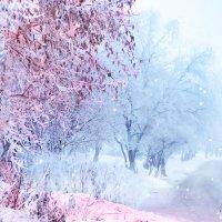 Такая волшебная зима в моём дворе. :: Марина Корнова