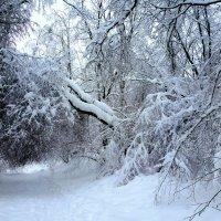 После снегопада 2 :: ES
