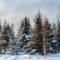 Москва, солнце, зима!!!! :: Александр Шмалёв