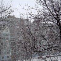 Вчерашний снег :: Нина Корешкова