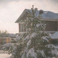 Вид из моего окна :: Наталья Алексеева