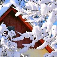Снег делает всё удивительным! :: Татьяна Помогалова