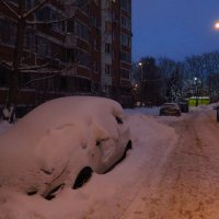 Хорошо закопался! :: Андрей Лукьянов
