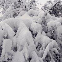 Просто снег! :: Лара (АГАТА)