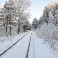 Дорога в неизвестное :: Алексей http://fotokto.ru/id148151Морозов