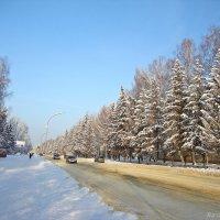 Морозная погода :: Лидия (naum.lidiya)