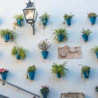 Стена внутреннего дворика в Старом городе, Кордова :: Владимир Брагилевский