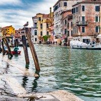 В Венеции похолодало :: Konstantin Rohn