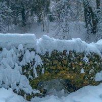 Снежная картина :: Сергей Цветков