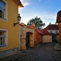 Cтарый город острых шпилей, узких улиц, красных крыш. :: Alex