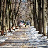 Начало весны :: Михаил Танин