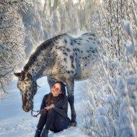 Зима :: Елена Логачева