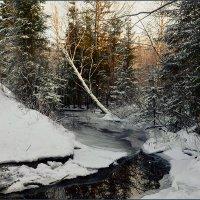 Обычная зимняя тайга. :: Сергей l
