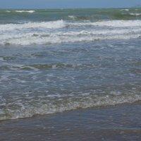 Разговор с океаном... :: Алёна Савина